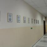 «Мир на конце карандаша» выставка рисунков П. С. Бахлыкова